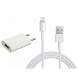 Chargeur Lightning Pour iPhone 5